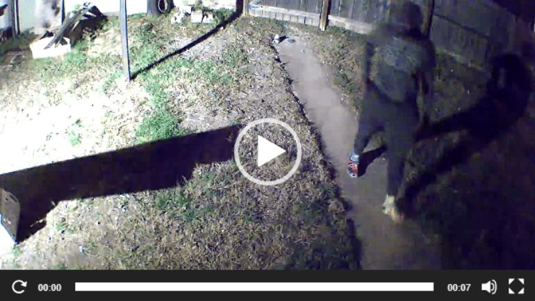 Killeen Police Needs Your Help Identifying a Burglar
