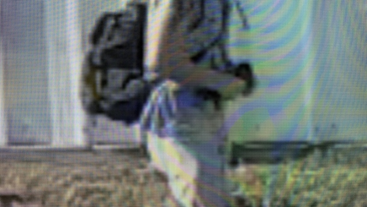 The Bell County Crime Stoppers and the Killeen Police Department Seek Your Help in Identifying a Burglar